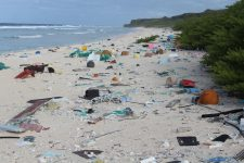 Beach with plastic waste